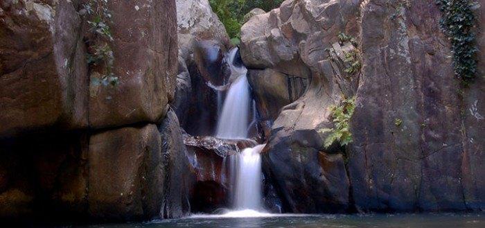 Los Alcornocales, un paraíso natural para disfrutar